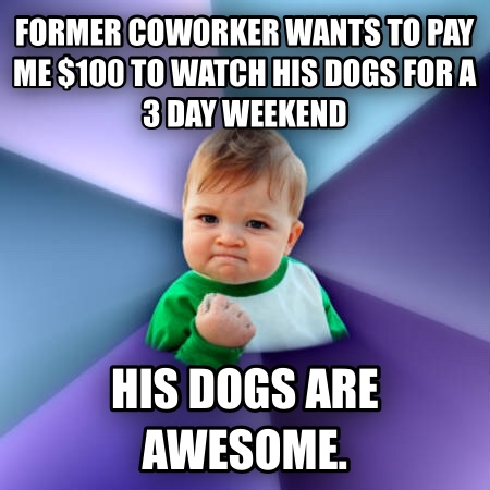 Success Kid former coworker wants to pay me $100 to watch his dogs for a 3 day weekend his dogs are awesome.  , made with livememe meme creator