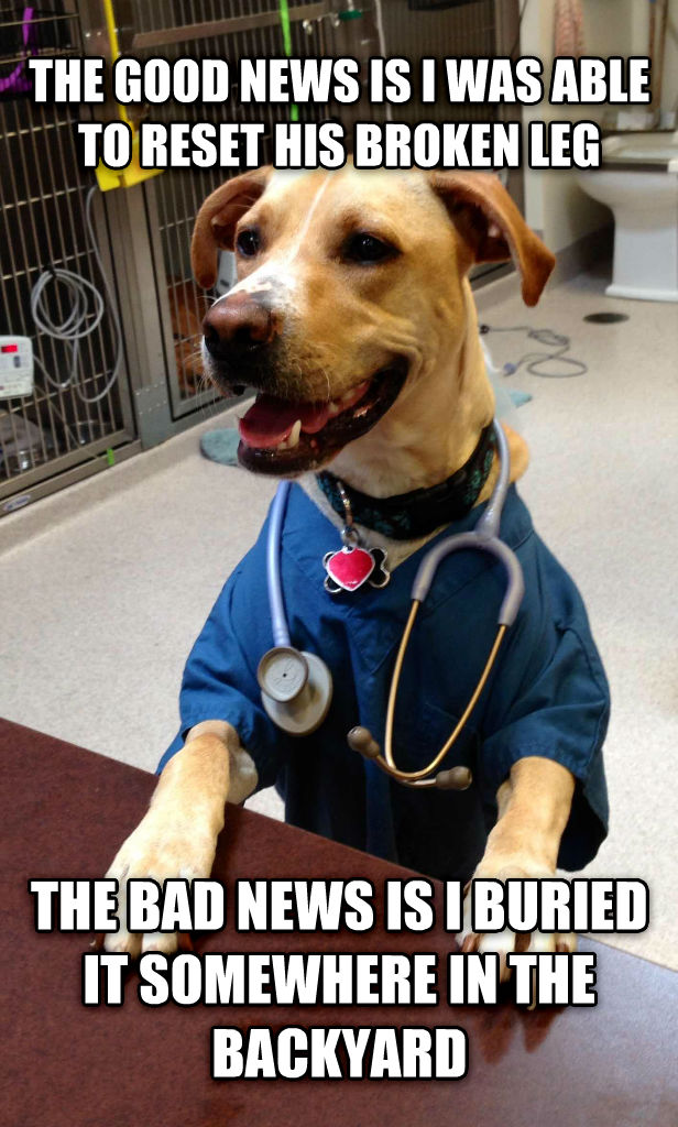 Dr Dog the good news is i was able to reset his broken leg the bad news is i buried it somewhere in the backyard , made with livememe meme generator