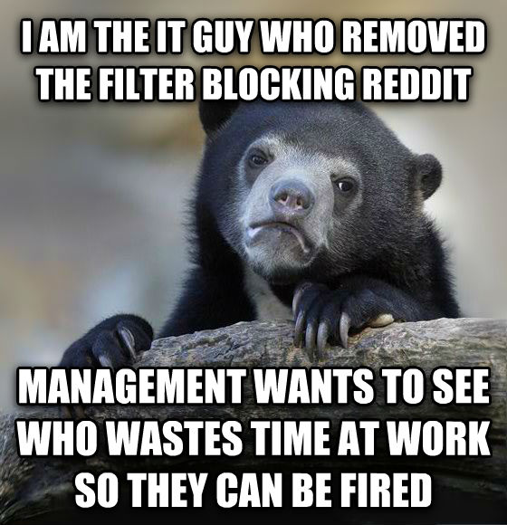 Confession Bear i am the it guy who removed the filter blocking reddit  management wants to see who wastes time at work so they can be fired , made with livememe meme maker