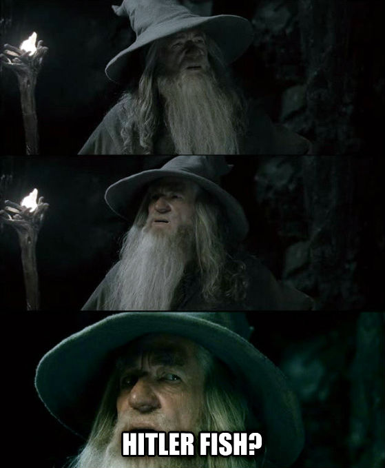 Confused Gandalf - I Have No Memory Of This Place  hitler fish? , made with livememe meme generator