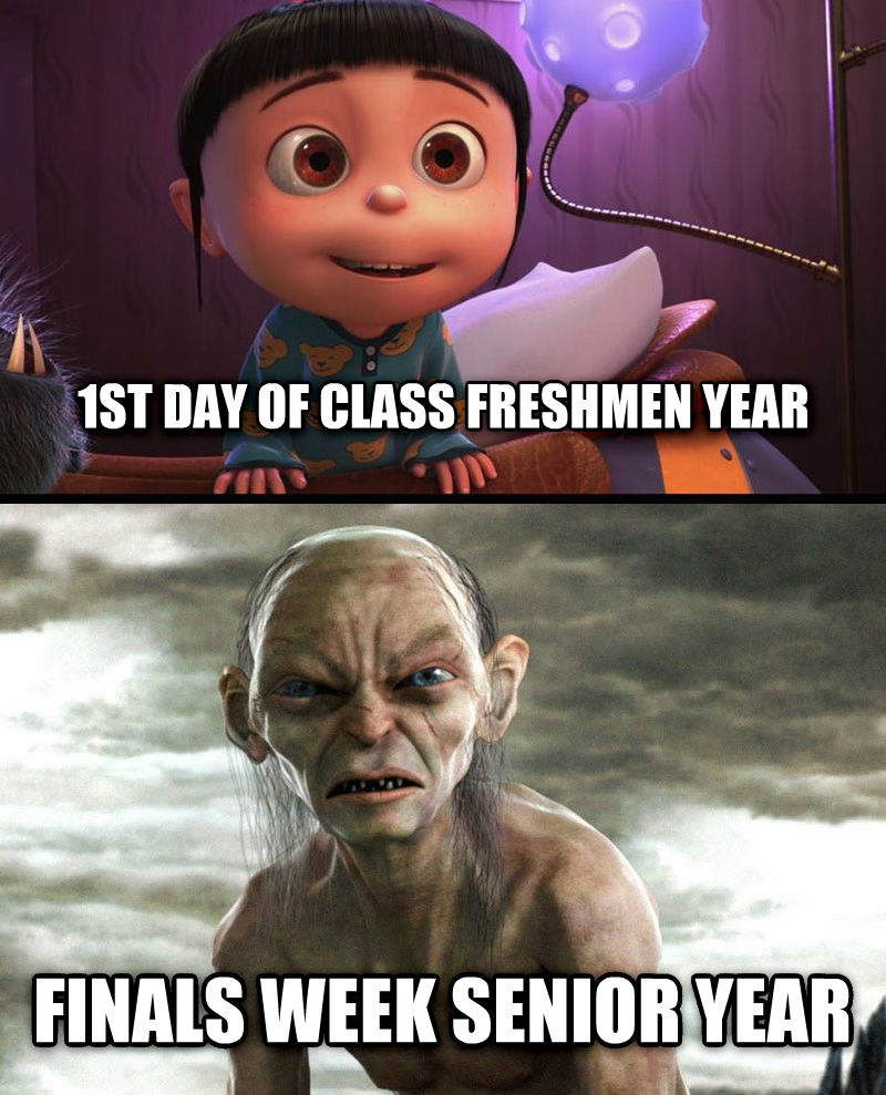 Pharoah 1st day of class freshmen year finals week senior year , made with livememe meme creator