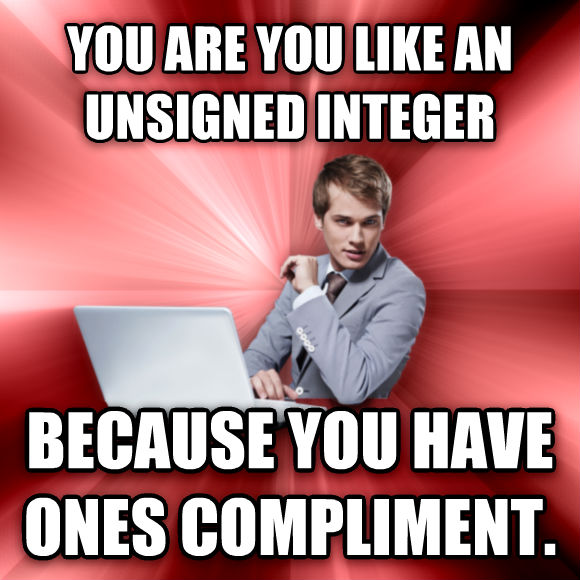 untitled meme you are you like an unsigned integer because you have ones compliment.  , made with livememe meme generator