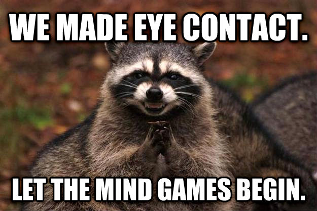 Evil Plotting Raccoon we made eye contact. let the mind games begin.  , made with livememe meme generator