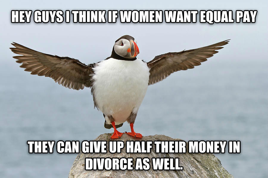 popular opinion puffin hey guys i think if women want equal pay they can give up half their money in divorce as well. , made with livememe meme creator
