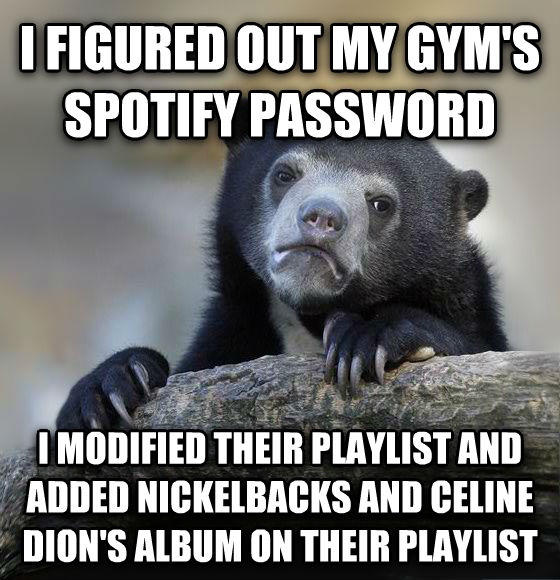 Confession Bear i figured out my gym s spotify password  i modified their playlist and added nickelbacks and celine dion s album on their playlist , made with livememe meme maker