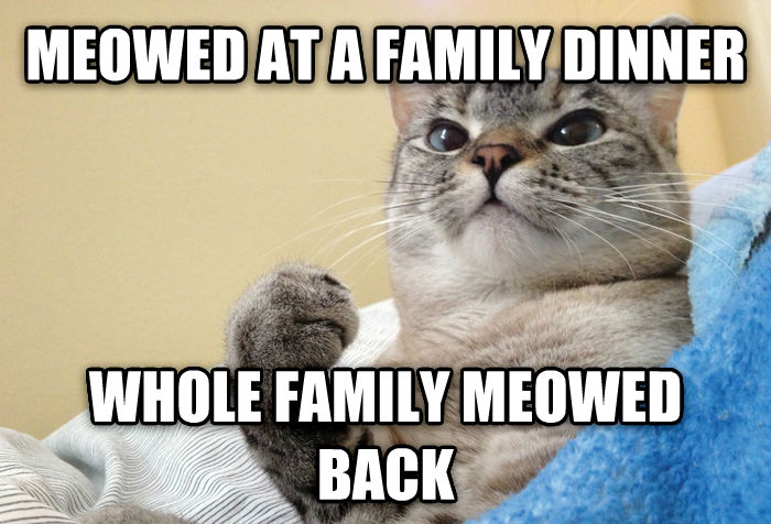 Success Cat meowed at a family dinner whole family meowed back , made with livememe meme generator