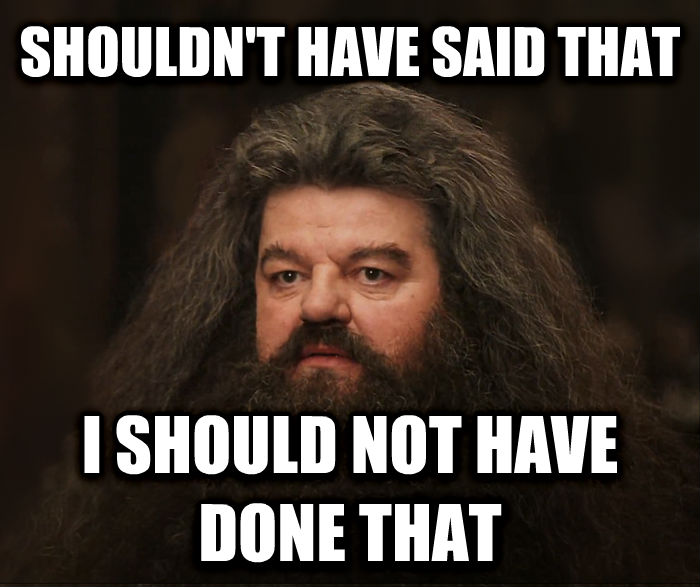 Hagrid Shouldn t Have Done That, He Should Not Have Done That shouldn t have said that i should not have done that , made with livememe meme maker