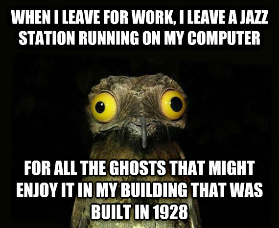 Weird Stuff I Do Potoo when i leave for work, i leave a jazz station running on my computer for all the ghosts that might enjoy it in my building that was built in 1928 , made with livememe meme creator