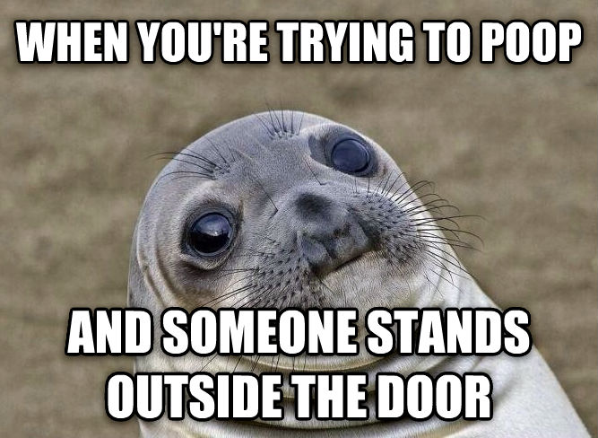 Uncomfortable Situation Seal when you re trying to poop and someone stands outside the door , made with livememe meme creator