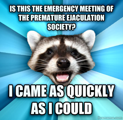 Lame Pun Coon is this the emergency meeting of the premature celebration society? i came as quickly as i could  , made with livememe meme generator