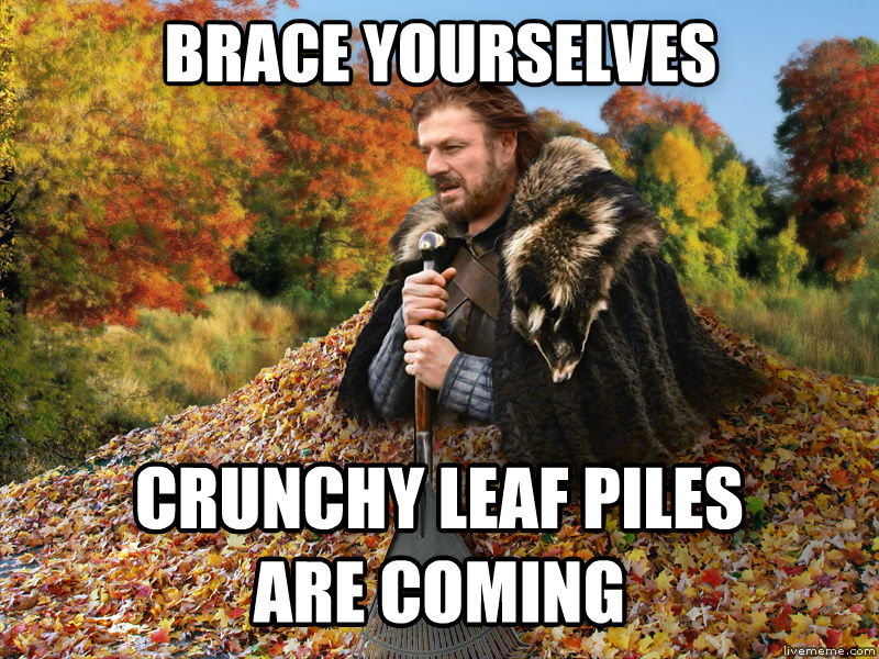 Imminent Autumn brace yourselves crunchy leaf piles are coming , made with livememe meme maker