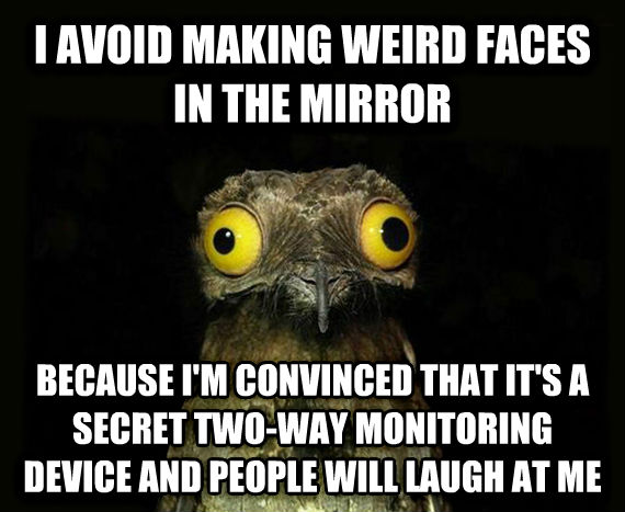 Weird Stuff I Do Potoo i avoid making weird faces in the mirror because i m convinced that it s a secret two-way monitoring device and people will laugh at me , made with livememe meme maker