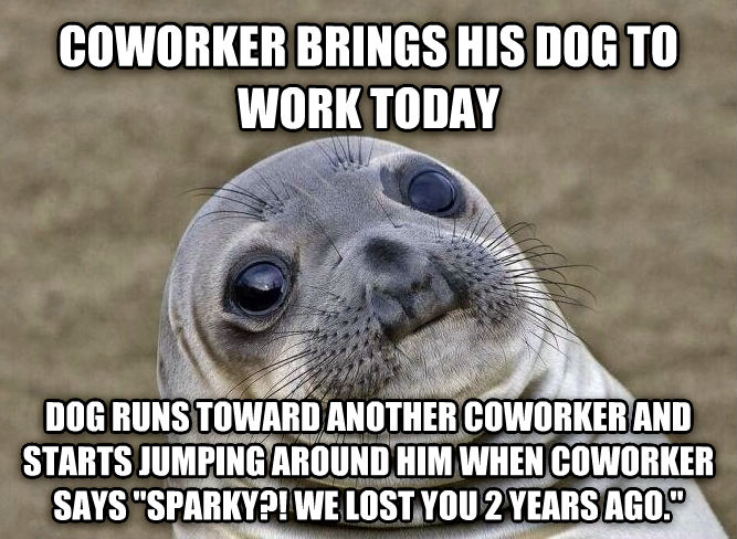 Uncomfortable Situation Seal coworker brings his dog to work today dog runs toward another coworker and starts jumping around him when coworker says  sparky?! we lost you 2 years ago.  , made with livememe meme maker