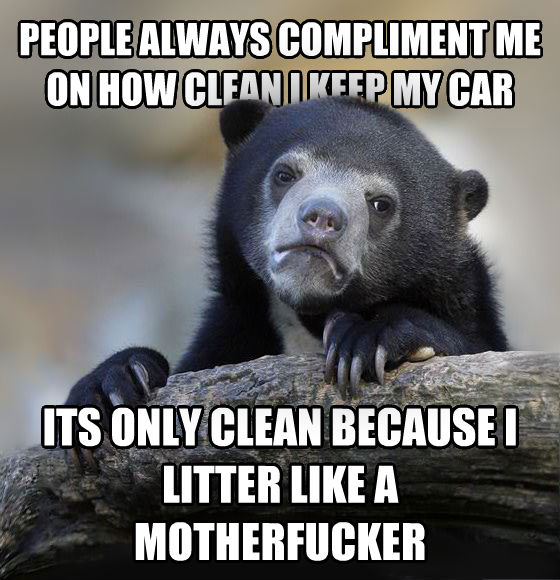 Confession Bear people always compliment me on how clean i keep my car its only clean because i litter like a vexingmortal , made with livememe meme generator