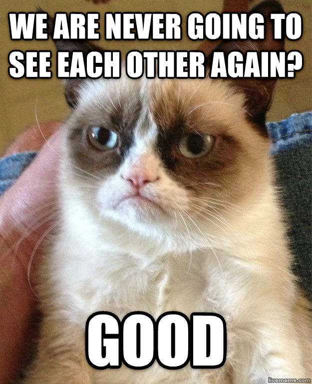 Grumpy Cat we are never going to see each other again? good , made with livememe meme maker