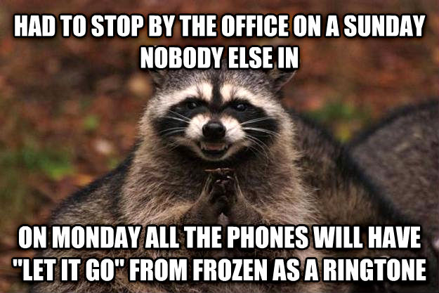 Evil Plotting Raccoon had to stop by the office on a sunday nobody else in on monday all the phones will have  let it go  from frozen as a ringtone , made with livememe meme generator