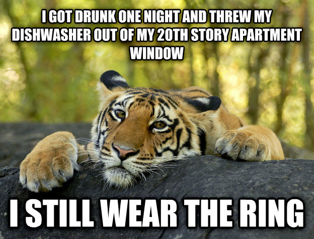 Terrible Twist Tiger i got drunk one night and threw my dishwasher out of my 20th story apartment window i still wear the ring , made with livememe meme maker