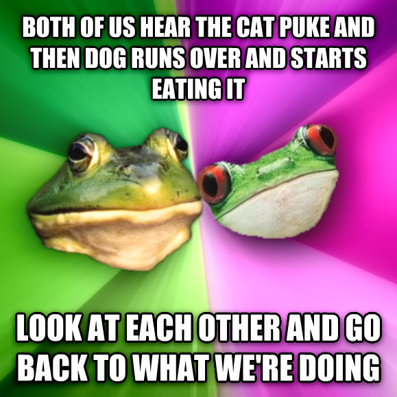 Foul Couple both of us hear the cat puke and then dog runs over and starts eating it look at each other and go back to what we re doing , made with livememe meme generator