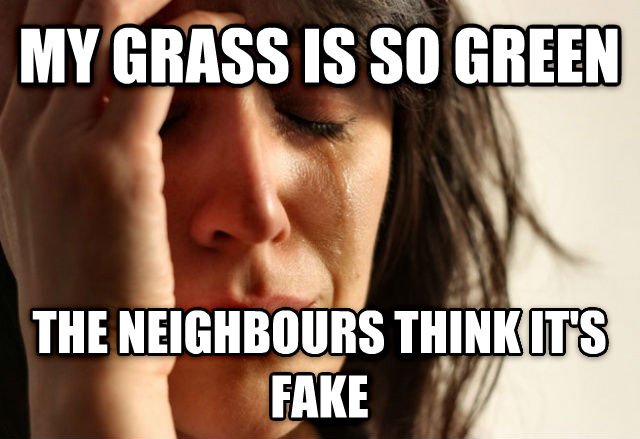 First World Problems my grass is so green the neighbours think its fake , made with livememe meme generator