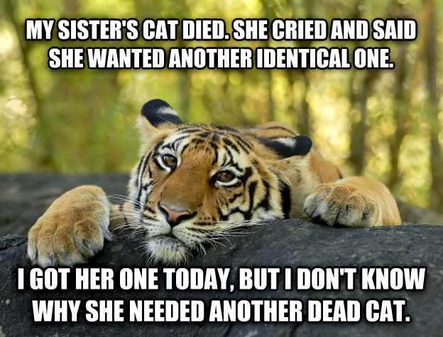 Terrible Twist Tiger my sister s cat died. she cried and said she wanted another identical one. i got her one today, but i don t know why she needed another dead cat. , made with livememe meme generator