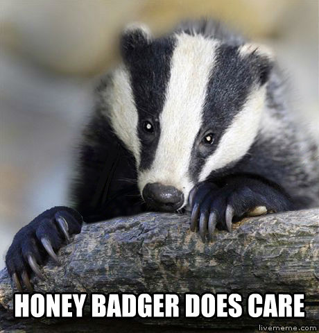 Depressed Badger  honey badger does care , made with livememe meme generator