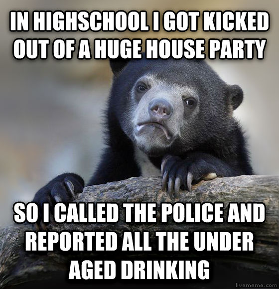 Confession Bear in highschool i got kicked out of a huge house party so i called the police and reported all the under aged drinking , made with livememe meme generator