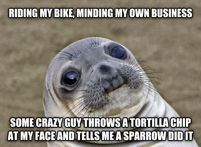 Uncomfortable Situation Seal riding my bike, minding my own business some crazy guy throws a tortilla chip at my face and tells me a sparrow did it , made with livememe meme maker