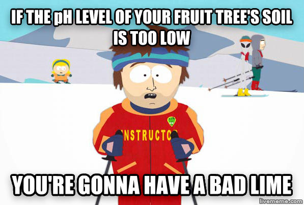 Super Cool Ski Instructor if the ph level of your fruit tree s soil is too low you re gonna have a bad lime , made with livememe meme generator