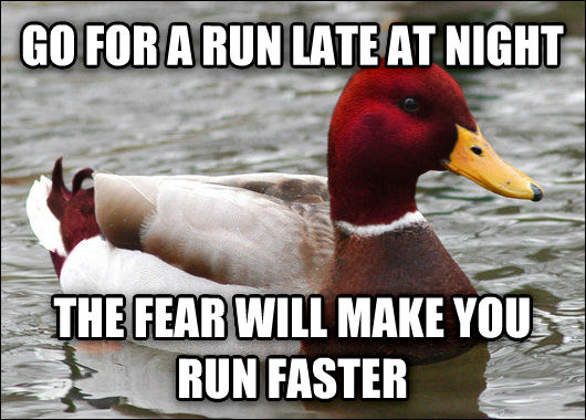 Malicious Advice Mallard go for a run late at night the fear will make you run faster , made with livememe meme creator