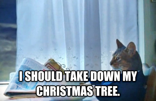 Sophisticated Cat  i should take down my christmas tree. , made with livememe meme generator
