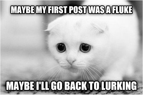 The Sad Cat maybe my first post was a fluke maybe i ll go back to lurking , made with livememe meme creator