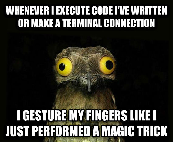 Weird Stuff I Do Potoo whenever i execute code i ve written or make a terminal connection i gesture my fingers like i just performed a magic trick , made with livememe meme generator