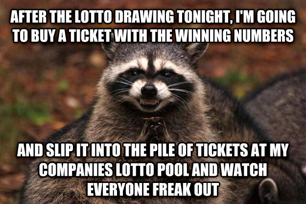 Evil Plotting Raccoon after the lotto drawing tonight, i m going to buy a ticket with the winning numbers and slip it into the pile of tickets at my companies lotto pool and watch everyone freak out , made with livememe meme creator