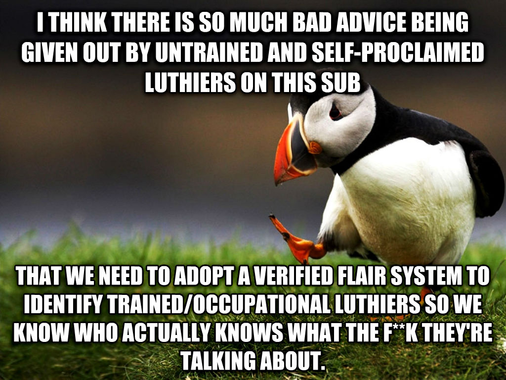 unpopular opinion puffin i think there is so much bad advice being given out by untrained and self-proclaimed luthiers on this sub that we need to adopt a verified flair system to identify trained/occupational luthiers so we know who actually knows what the f**k they re talking about. , made with livememe meme generator