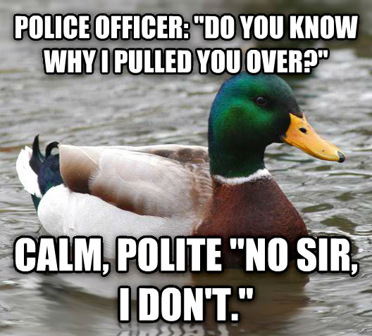 Actual Advice Mallard police officer:  do you know why i pulled you over?  calm, polite  no sir, i don t.  , made with livememe meme generator