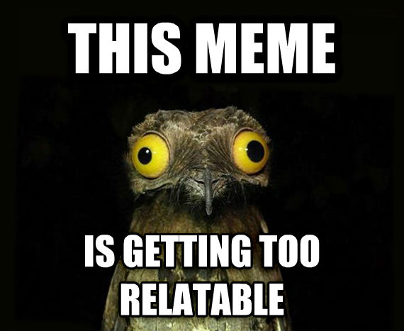 Weird Stuff I Do Potoo this meme  is getting too relatable , made with livememe meme generator