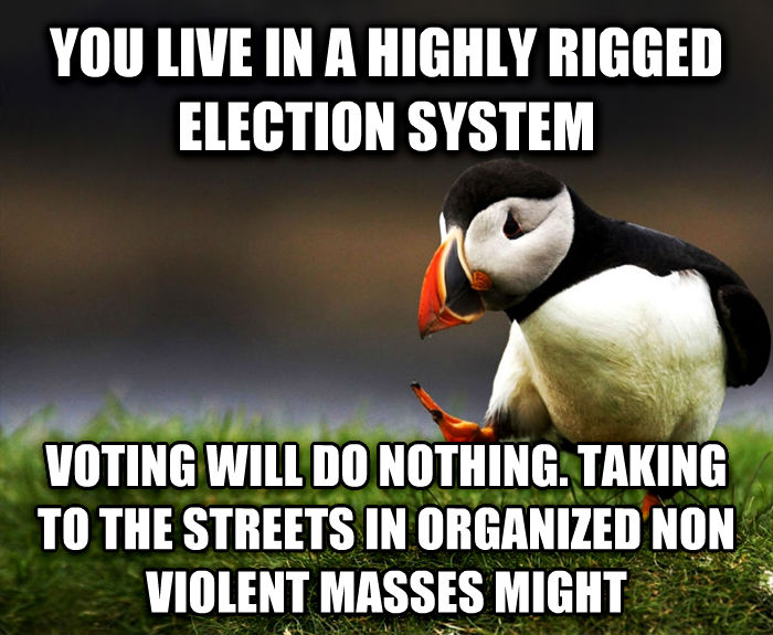 Unpopular Opinion Puffin you live in a highly rigged election system voting will do nothing. taking to the streets in organized non violent masses might , made with livememe meme generator