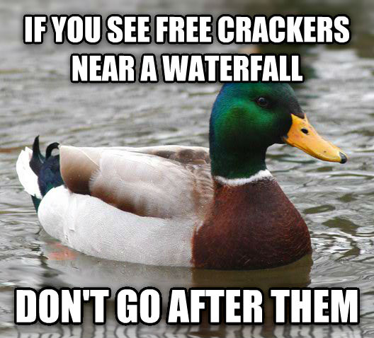 Actual Advice Mallard if you see free crackers near a waterfall don t go after them , made with livememe meme creator