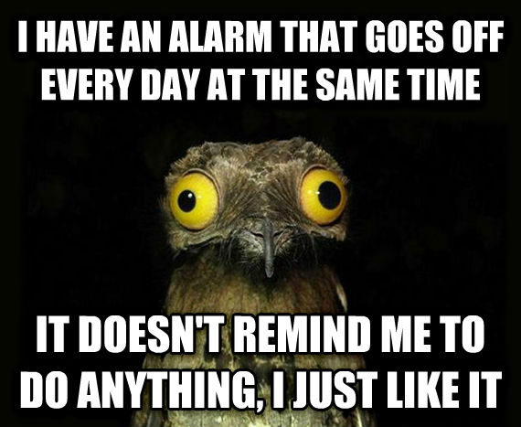 Weird Stuff I Do Potoo i have an alarm that goes off every day at the same time it doesn t remind me to do anything, i just like it , made with livememe meme creator