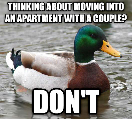 Actual Advice Mallard thinking about moving into an apartment with a couple? don t , made with livememe meme maker