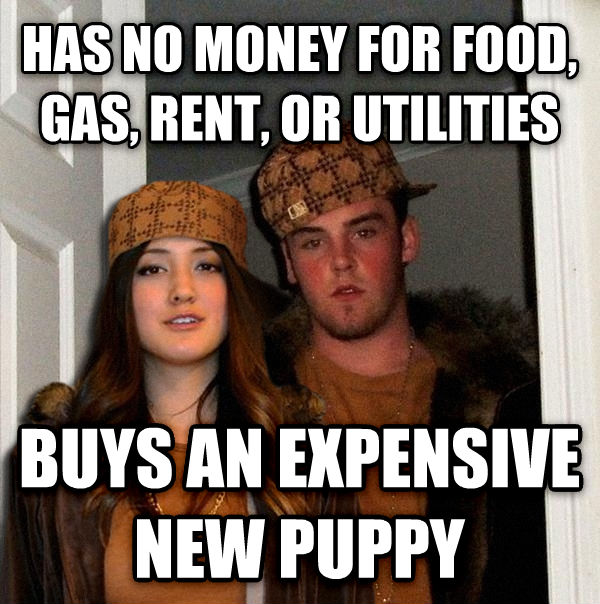 Scumbag Couple has no money for food, gas, rent, or utilities buys an expensive new puppy , made with livememe meme maker
