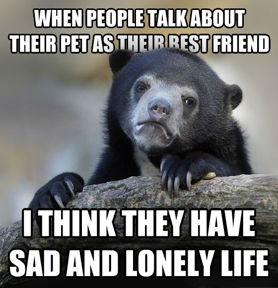Confession Bear when people talk about their pet as their best friend i think they have sad and lonely life , made with livememe meme maker
