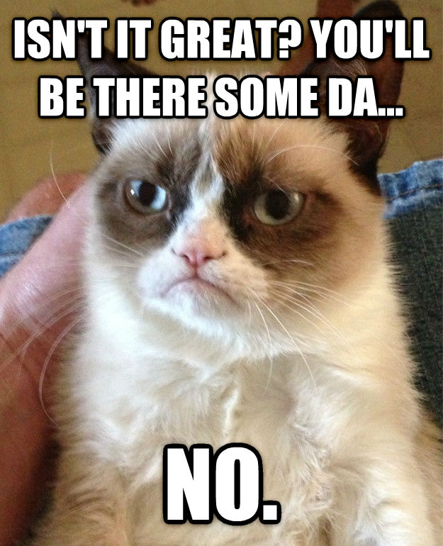 Grumpy Cat isn t it great? you ll be there some da... no. , made with livememe meme generator