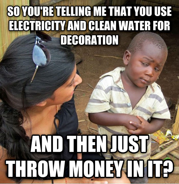 Skeptical Third World Kid so you re telling me that you use electricity and clean water for decoration and then just throw money in it? , made with livememe meme generator
