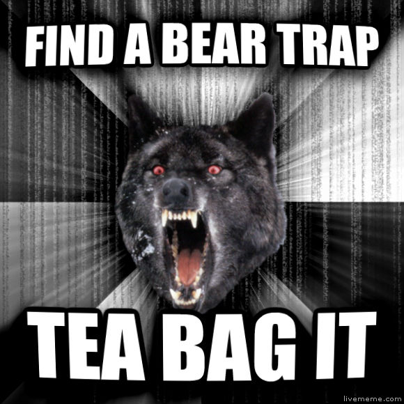 Insanity Wolf find a bear trap tea bag it  , made with livememe meme maker
