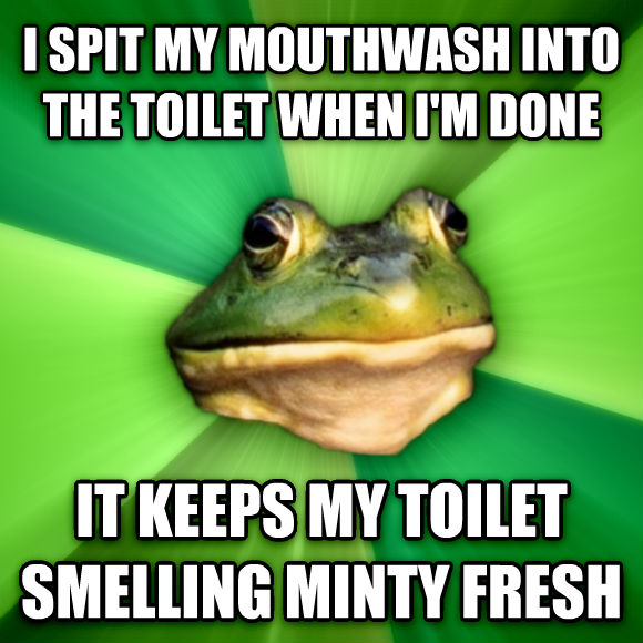 Foul Bachelor Frog i spit my mouthwash into the toilet when i m done it keeps my toilet smelling minty fresh  , made with livememe meme creator