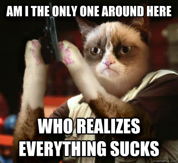 Angry Grumpy Cat am i the only one around here who realizes everything sucks , made with livememe meme creator
