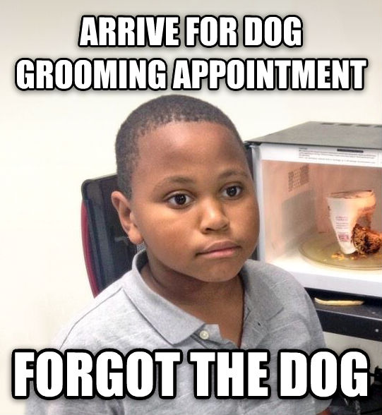Minor Mistake Marvin arrive for dog grooming appointment forgot the dog , made with livememe meme maker