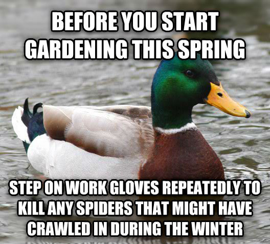 Actual Advice Mallard before you start gardening this spring step on work gloves repeatedly to kill any spiders that might have crawled in during the winter , made with livememe meme generator