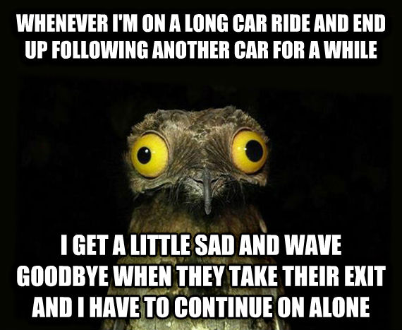 Weird Stuff I Do Potoo whenever i m on a long car ride and end up following another car for a while i get a little sad and wave goodbye when they take their exit and i have to continue on alone , made with livememe meme maker
